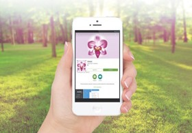 Мобильное приложение Luxapp
